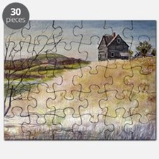 Old House Puzzle