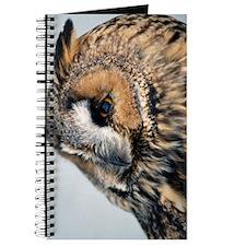 Eagle Owl Kindle Sleeve Journal