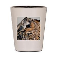Eagle Owl Stadium Blanket Shot Glass