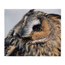 Eagle Owl Pillow Case Throw Blanket