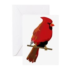 Male Cardinal Greeting Cards (Pk of 10)
