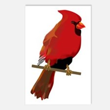 Male Cardinal Postcards (Package of 8)