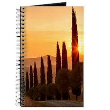 136016808 Journal