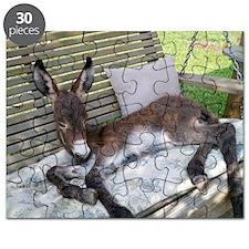 Lazy Ass Puzzle