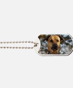 Cody He Is Your Friend You Are His Life Dog Tags