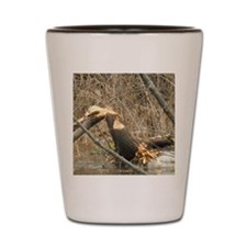 Beavers Almost Done Shot Glass