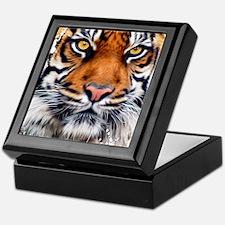 Male Siberian Tiger Keepsake Box