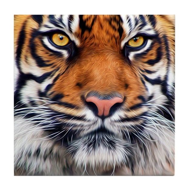 Siberian Tiger Male Tile Coaster By Admin Cp2467713