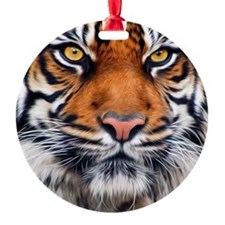 Siberian Tiger Male Ornament