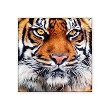 """Siberian Tiger Male Square Sticker 3"""" x 3"""""""