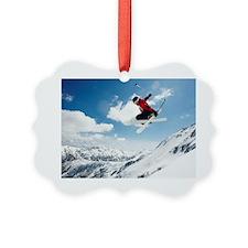 113862137 Ornament