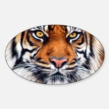 Male Siberian Tiger Decal
