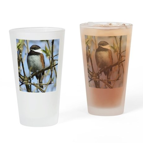 BlackCappedChickadeeSquare Drinking Glass