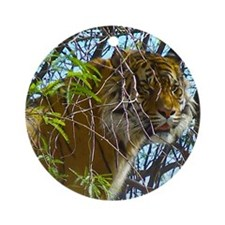 Tree Tiger Round Ornament