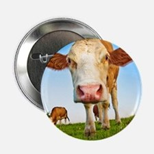 "cow 2.25"" Button"