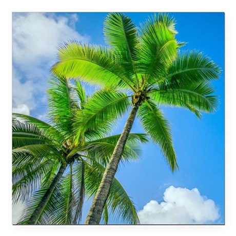 Palm tree Square Car Magnet 3 x 3 by ADMINCP76162783