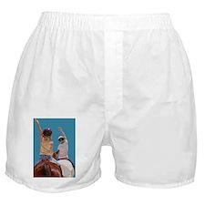 Follow Your Heart Horse Boxer Shorts