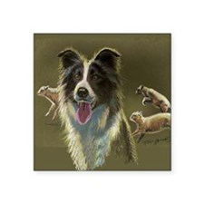 "Border Collie with Sheep Square Sticker 3"" x 3"""
