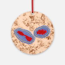 Vaccinia virus particles, TEM Round Ornament