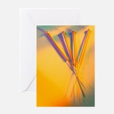 View of several acupuncture needles Greeting Card