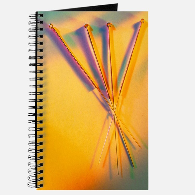 View of several acupuncture needles Journal