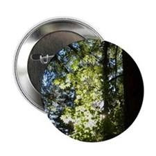 "Trees 2.25"" Button"