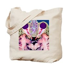 Vision and the brain, MRI scan Tote Bag