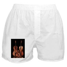 m_84_curtains_835_H_F Boxer Shorts
