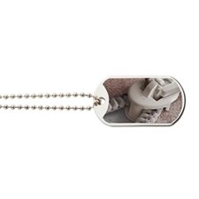 Zip, SEM Dog Tags
