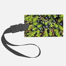 Crowberry fruit (Empetrum hermap Luggage Tag