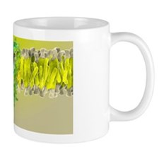 Cannabinoid receptor binding, artwork Mug