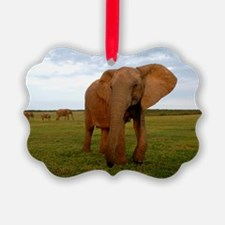 African elephant Ornament