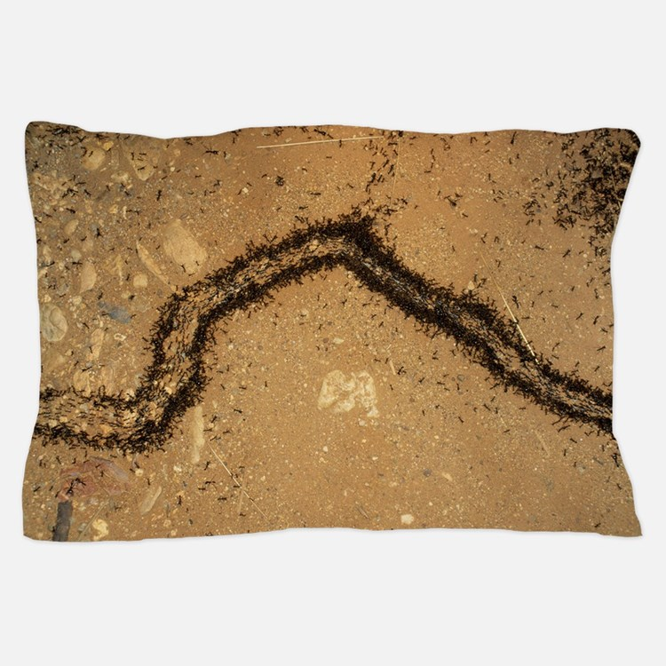 Army ants Pillow Case