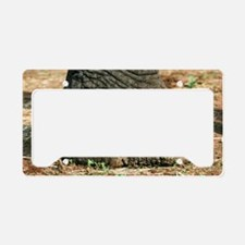 African elephant's foot License Plate Holder