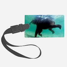 Asian elephant (Elephas maximus) Luggage Tag