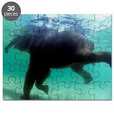 Asian elephant (Elephas maximus) Puzzle