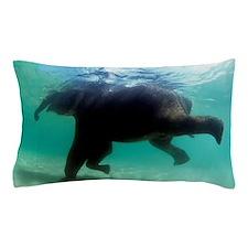 Asian elephant (Elephas maximus) Pillow Case