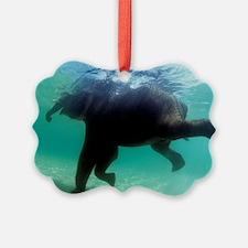 Asian elephant (Elephas maximus) Ornament