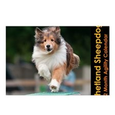 Shetland Sheepdog Agility Postcards (Package of 8)