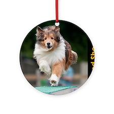Shetland Sheepdog Agility Calendar Round Ornament