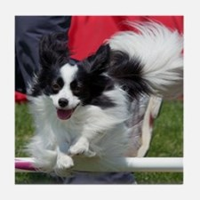 Papillon Surf Tile Coaster