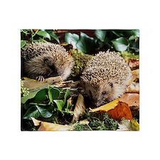 Baby hedgehogs Throw Blanket