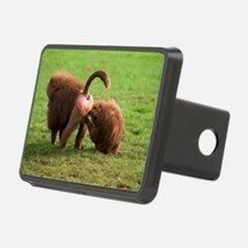Baboons grooming Hitch Cover