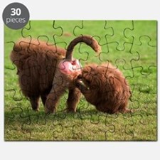 Baboons grooming Puzzle
