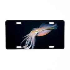 Bigfin reef squid Aluminum License Plate