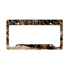 Banded mongoose License Plate Holder