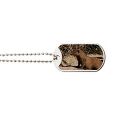 Banded mongoose Dog Tags