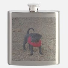 Beagador Puppy Flask
