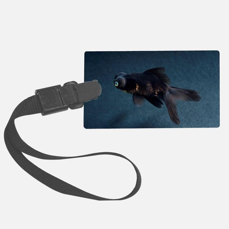 Black Moor ornamental fish Luggage Tag