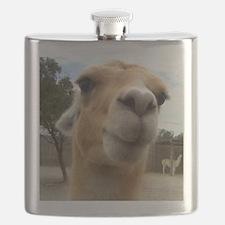 Llama Flask